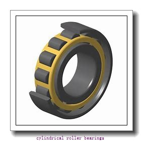 FAG NJ2311-E-TVP2-QP51-C4  Cylindrical Roller Bearings