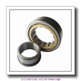 FAG NJ222-E-M1  Cylindrical Roller Bearings