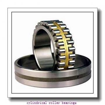FAG NJ1024-M1-C3  Cylindrical Roller Bearings